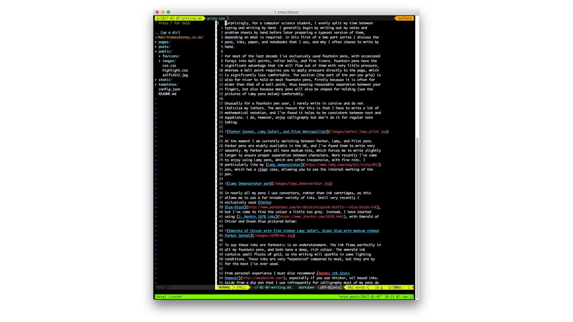 NeoVim running in tmux